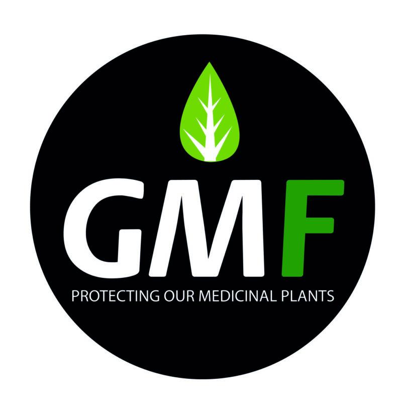 GMF Store